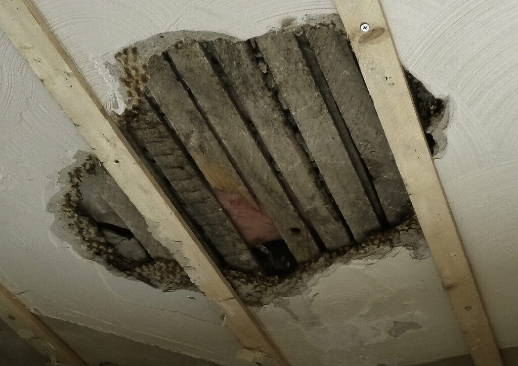 Gypsum Lath And Plaster : Home renovation plaster and drywall repair indiana